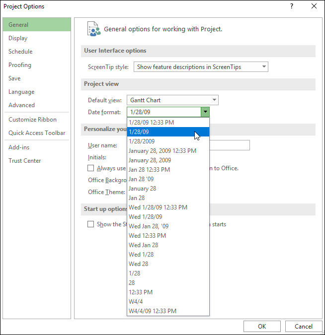 Figure 1: Project Options dialog - Date Format setting