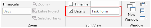 Figure 2: Select the Details checkbox in the View ribbon