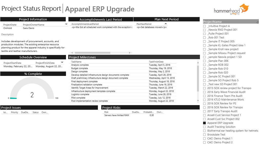 Hammerhead BI – Project Status Report Dashboard