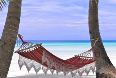 Hammock strung between two palm trees on a beach