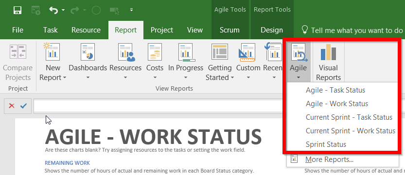 Tips on the New Agile Features in Microsoft Project Professional