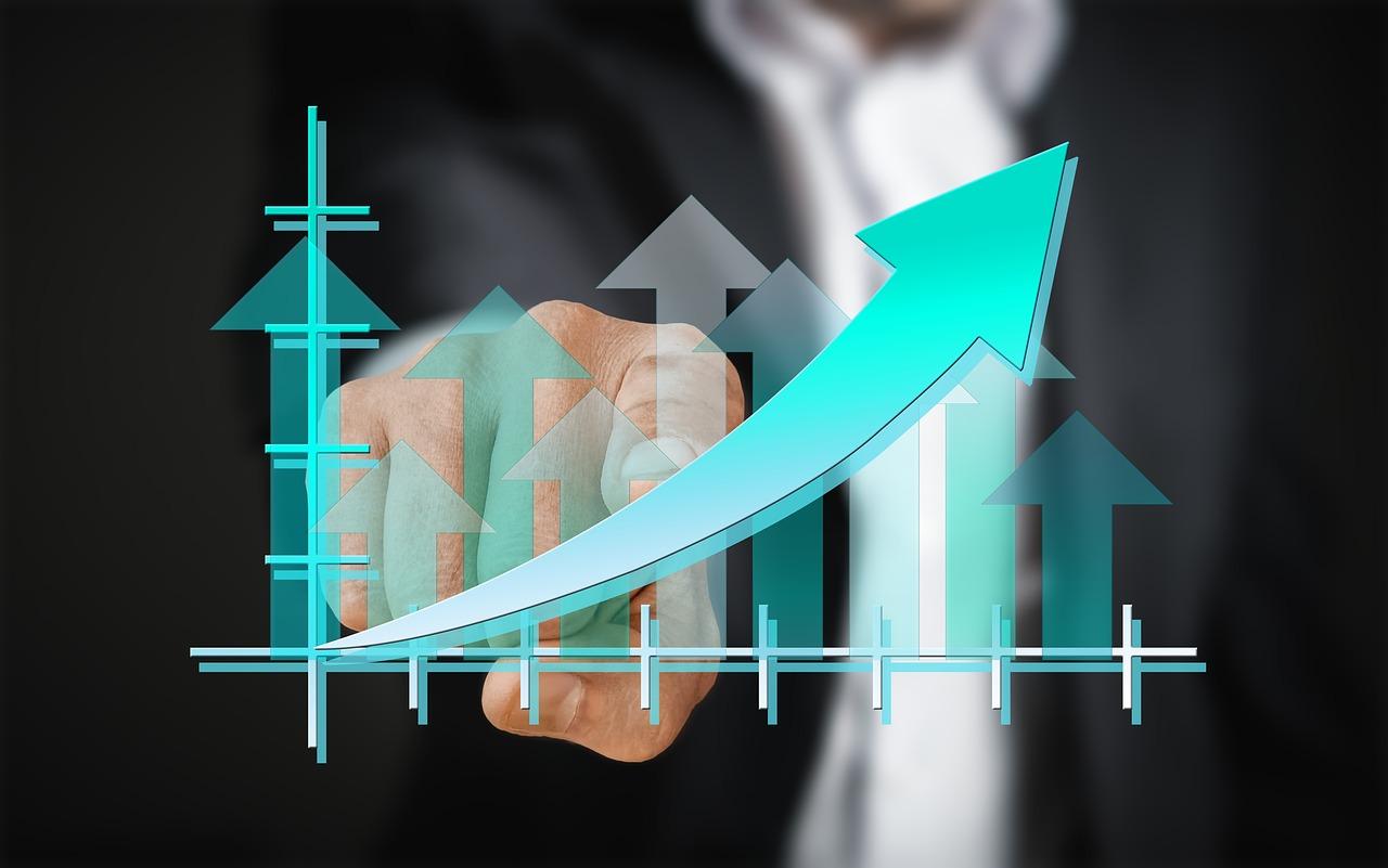portfolio management tools